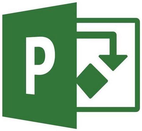 Curso de Microsoft Project 2020®